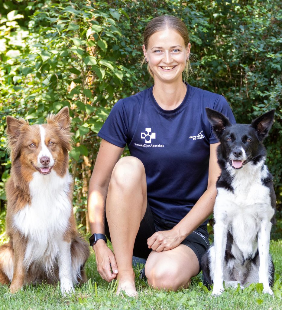 Instruktör på Källs Hunderi med två hundar